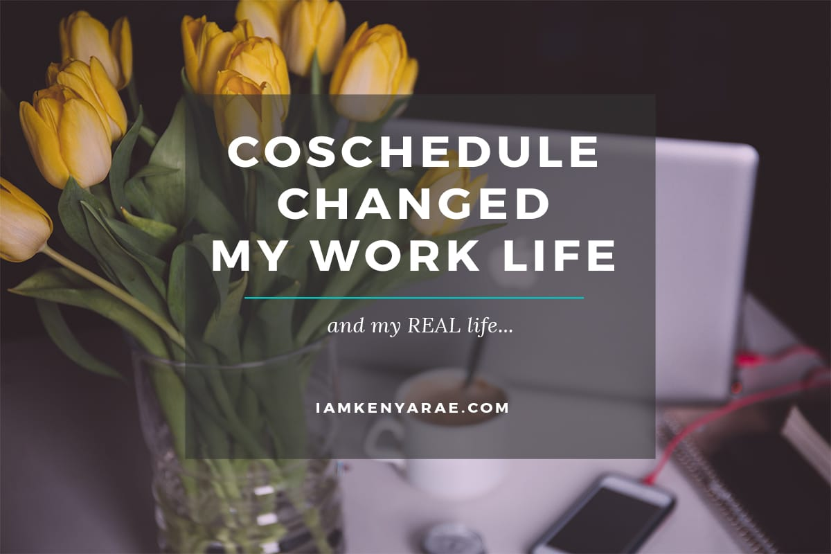 coschedule changed my life