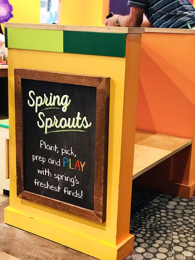 Sprouts Market at Marbles Museum