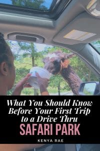 What you should know before your first visit to a drive thru safari park