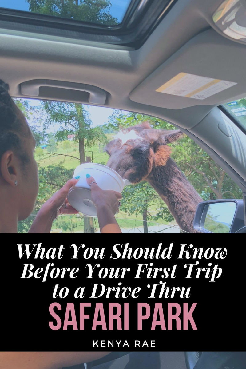 All The Things You Should Know Before Your First Trip to a Drive Thru Safari Park #familytravel #virginiasafaripark #wildanimals #virginaactivities