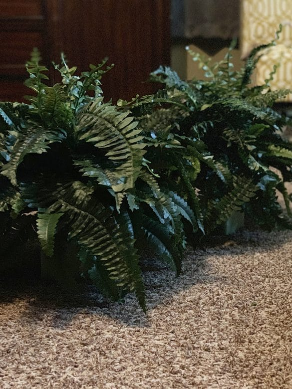 How To Make Realistic Hanging Boston Ferns For Under $20