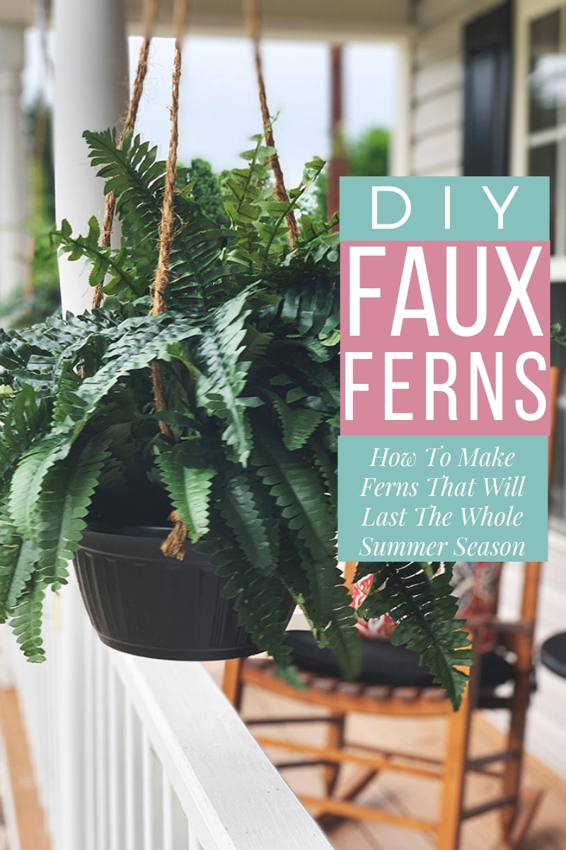 How to make ferns that will last the whole summer season