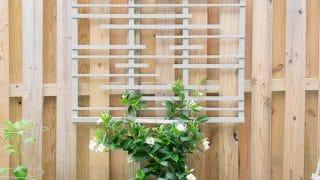 DIY Garden Trellis for Vines