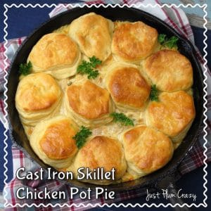 4 Ingredient Chicken Pot Pie