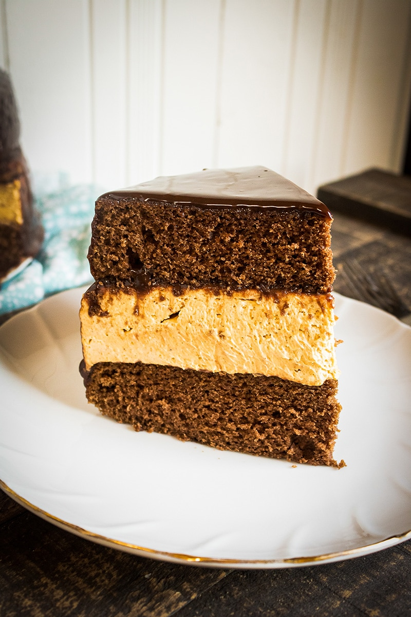 Chocolate Layer Cake with Pumpkin Cheesecake Layer