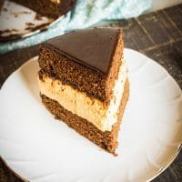 Chocolate Layer Cake with Layered Pumpkin Cheesecake Middle